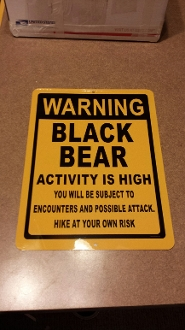Black Bear - Warning Sign