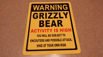 Grizzly Bear - Warning Sign